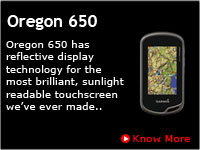 Garmin Handheld GPS Oregon 650 India
