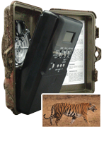Digital Trail Cameras Dealers in India